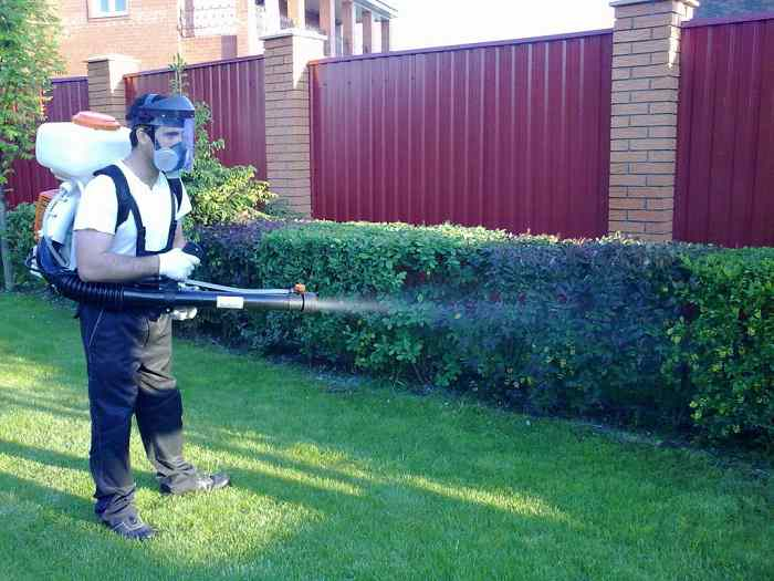 Ядохимикаты в саду - правила использования