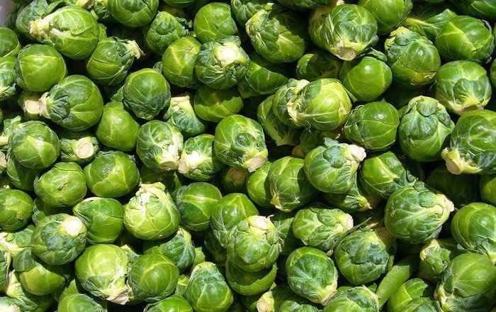 Как вырастить большой урожай брюссельской капусты