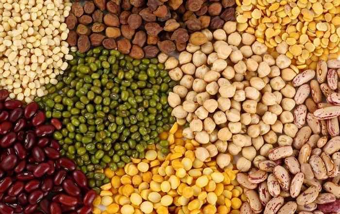 Полезные свойства бобов