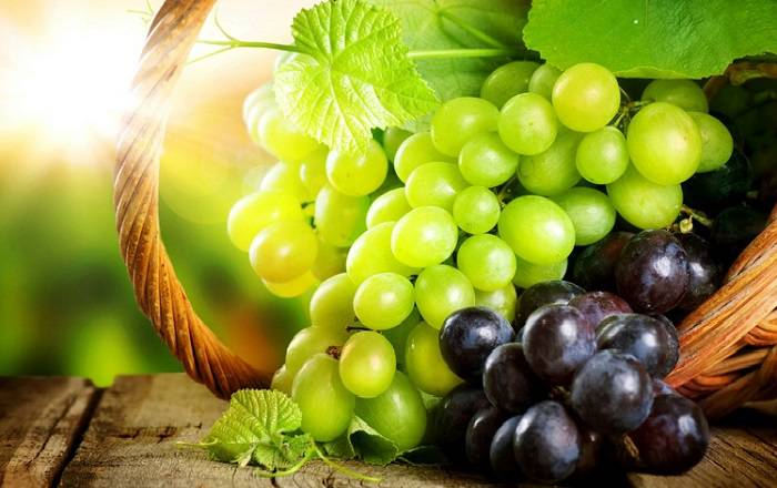Виноград польза и вред