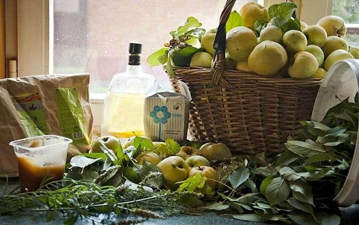 Рецепт моченых яблок с медом и мятой