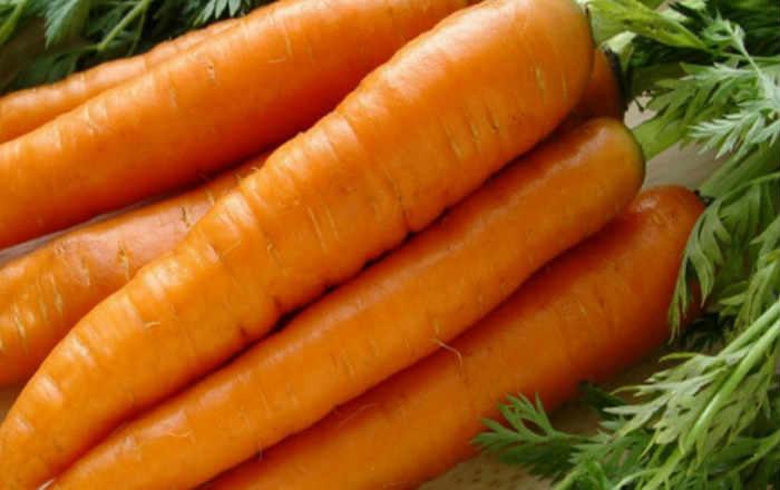 Способ посева моркови