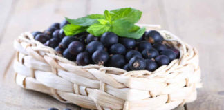 Чем подкормить черную смородину