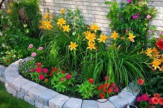 Как правильно расположить растения на клумбе