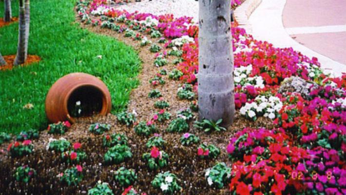 7 советов по озеленению двора