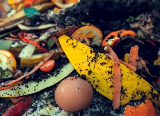 3 проверенных способа приготовления компоста
