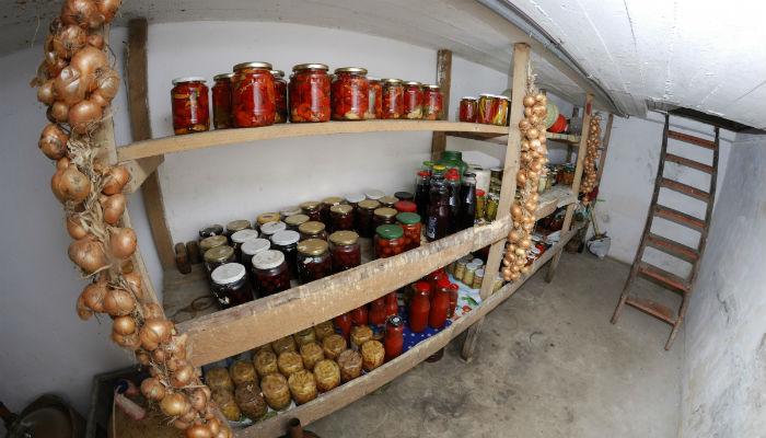 Чем обработать погреб от плесени и грибка перед закладкой овощей