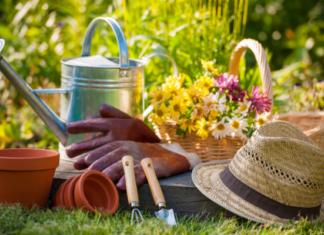 Советы бывалого огородника
