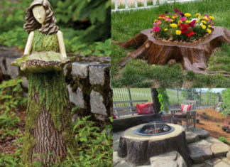 Пни в саду - возможность для необычного оформления