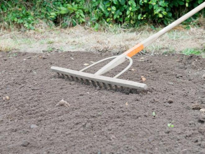 Почему лучше отказаться от частой перекопки почвы