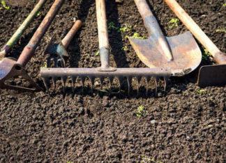 10 современных инструментов, которые облегчат работу в саду и огороде