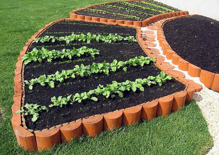 Декоративный огород: идеи оформления грядок