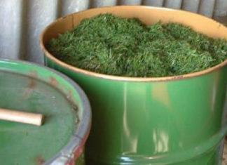 Как сделать зелёное удобрение из травы с водой в бочке