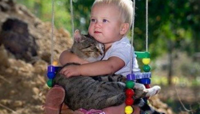 Какое животное завести ребенку-аллергику