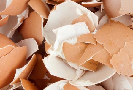 На даче пригодится: 16 вещей, которые не стоит выбрасывать