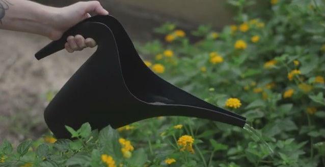 Яичная скорлупа - отличное удобрение для комнатных и садовых цветов