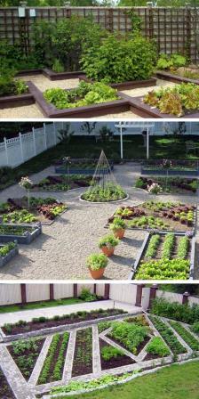 10 причин создать декоративный огород