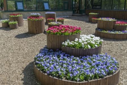 11 оригинальных идей для дачи о которых мечтает любой садовод