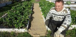 Как сделать, чтобы в проходах между грядками трава не росла