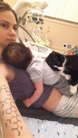 Кошка не слазила с живота беременной девушки. Но самое интересное произошло после родов