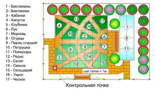 Схема огорода 4 сотки где что сажать фото 14