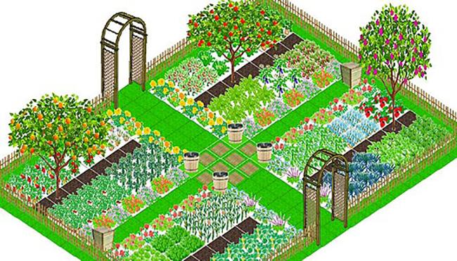 Схема огорода 4 сотки где что сажать фото 27