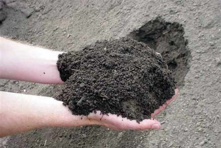Рыхлая земля пористая,