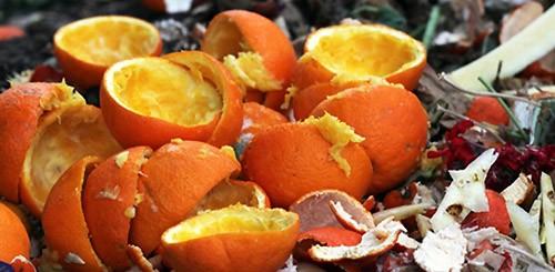 Apelsinovye_korki_kak_udobrenie2