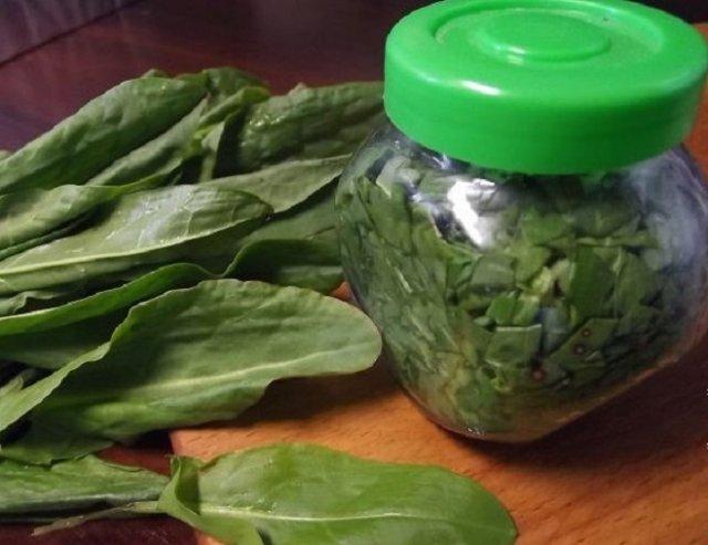 Консервирование овощей без соли